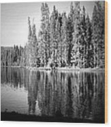 Tranquil Reflection In B And W Wood Print