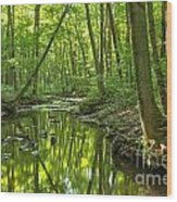 Tranquility In The Forest Wood Print by Adam Jewell