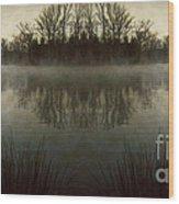 Tranquility Lake Wood Print by Doug Sturgess