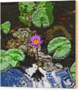 Tranquility - Lotus Flower Koi Pond By Sharon Cummings Wood Print