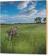 Tranquility On The Plains Wood Print