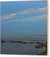 Tranquility Wood Print by Rhonda Humphreys