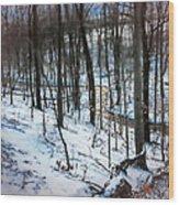 Tranquillity  Wood Print
