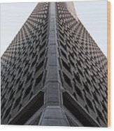 Transamerica Spine Wood Print