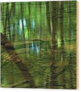 Translucent Forest Reflections Wood Print