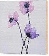 Translucent Poppies Wood Print