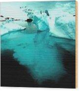 Transparent Iceberg Wood Print