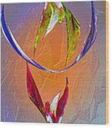Trapeze Angels Wood Print