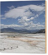 Travertine Hill Of Mammoth Hot Springs  Wood Print