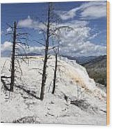Travertine Terrace And Dead Trees Wood Print