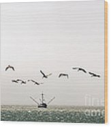 Trawler And Pelicans Wood Print
