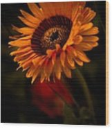 Treasure Flower Wood Print