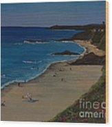 Treasure Island Laguna Beach Wood Print