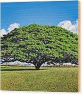 Tree 10 Wood Print