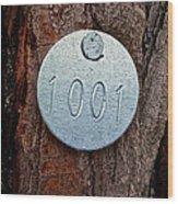 Tree 1001 Wood Print
