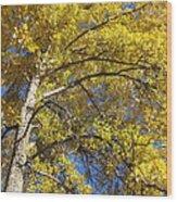Tree 4 Wood Print