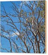 Tree 8 Wood Print