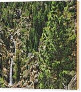 Tree Above Leavitt Falls  Wood Print