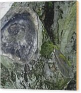 Tree Abstract Wood Print