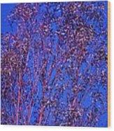 Tree Abstract Purple Blue  Wood Print