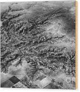 Tree Aerial Landscape V2 Wood Print
