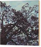Tree Against Sky Wood Print