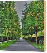 Tree Alley Wood Print