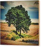 Tree Alone Wood Print
