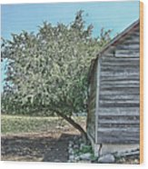 Tree And Building Wood Print