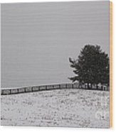 Tree And Fence In Snow Storm Wood Print