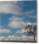 Tree And Fence On A Landscape, Santa Wood Print