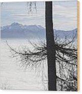 Tree And Fog Wood Print