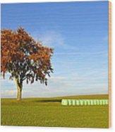 Tree And Hay Bales Wood Print