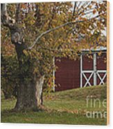 Tree And Red Barn Wood Print