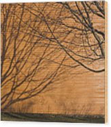 Tree And Shadow At Cogswells Grant Wood Print