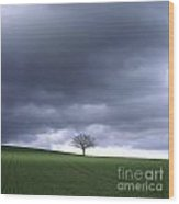 Tree And Stormy Sky  Wood Print