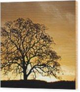 Tree At Golden Sunrise Wood Print