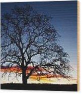 Tree At Sunrise Wood Print