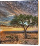 Tree At Sunset Wood Print by William Wetmore