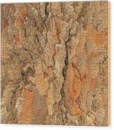 Tree Bark Abstract Wood Print