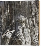 Tree Bark No. 3 Wood Print