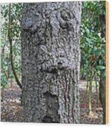 Tree Beard Wood Print