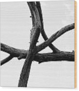 Tree Branch Art Wood Print