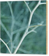 Tree Branches Abstract Teal Wood Print