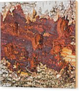 Tree Closeup - Wood Texture Wood Print