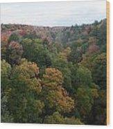 Tree Color Wood Print