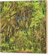 Tree Covered Road Wood Print