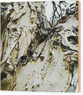 Tree Face Color Wood Print by Lisa Cortez