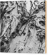 Tree Face No Color Wood Print by Lisa Cortez
