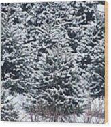 Tree Farm #3 Wood Print